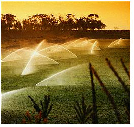 Apache Junction golf course benefits from our sprinkler repair services